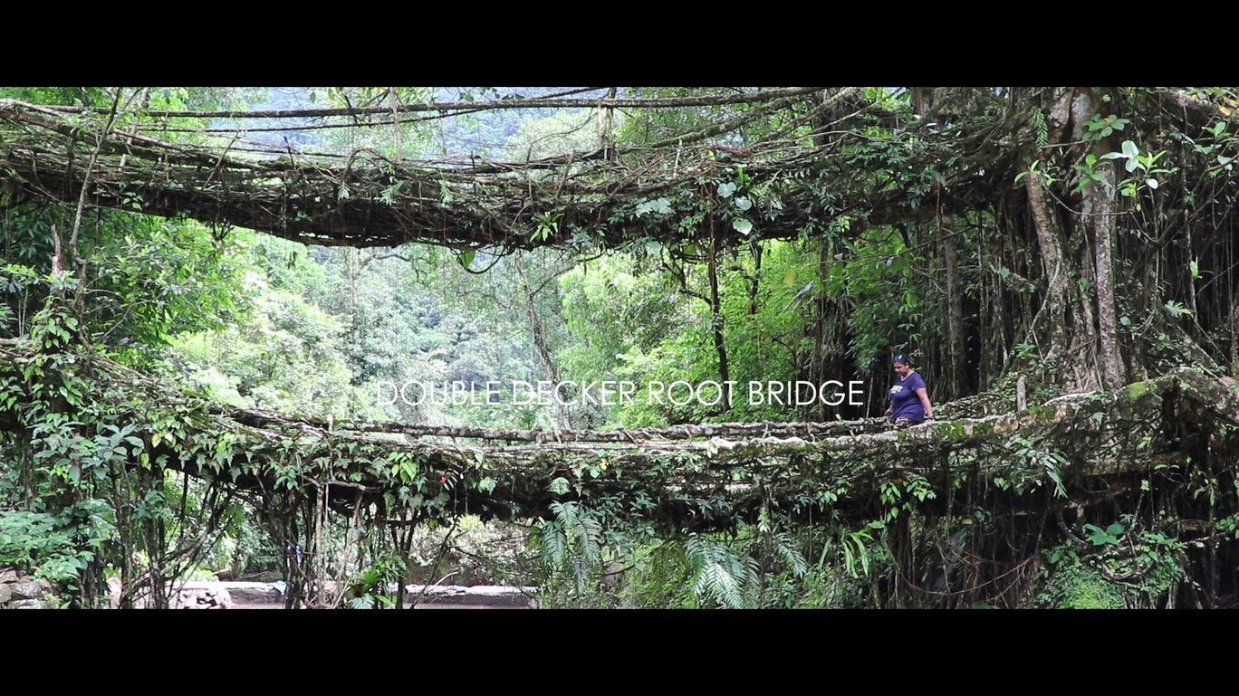 Double Decker Living Root Bridge, Cherrapunjee, Meghalaya
